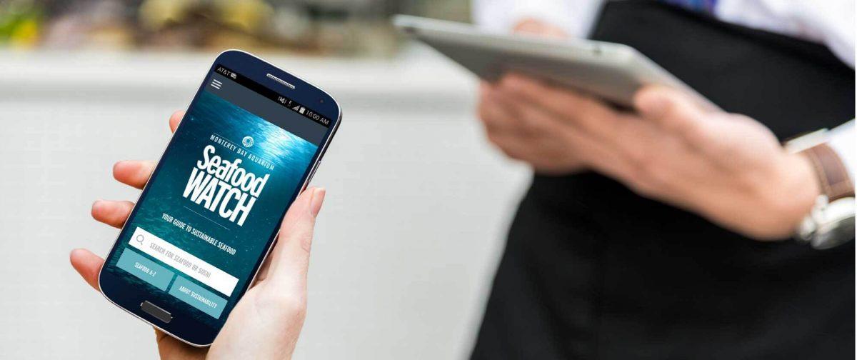 Seafood Watch: la app para consumir marisco de forma sostenible